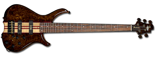 GB Rumour © 5 in Black American Burr Walnut with Madagascan Rosewood neck
